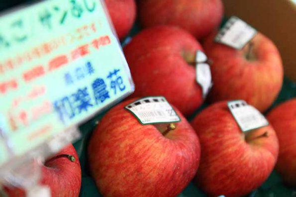 えころじあのリンゴ